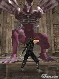 Ninja Gaiden: Dragon Sword Screens