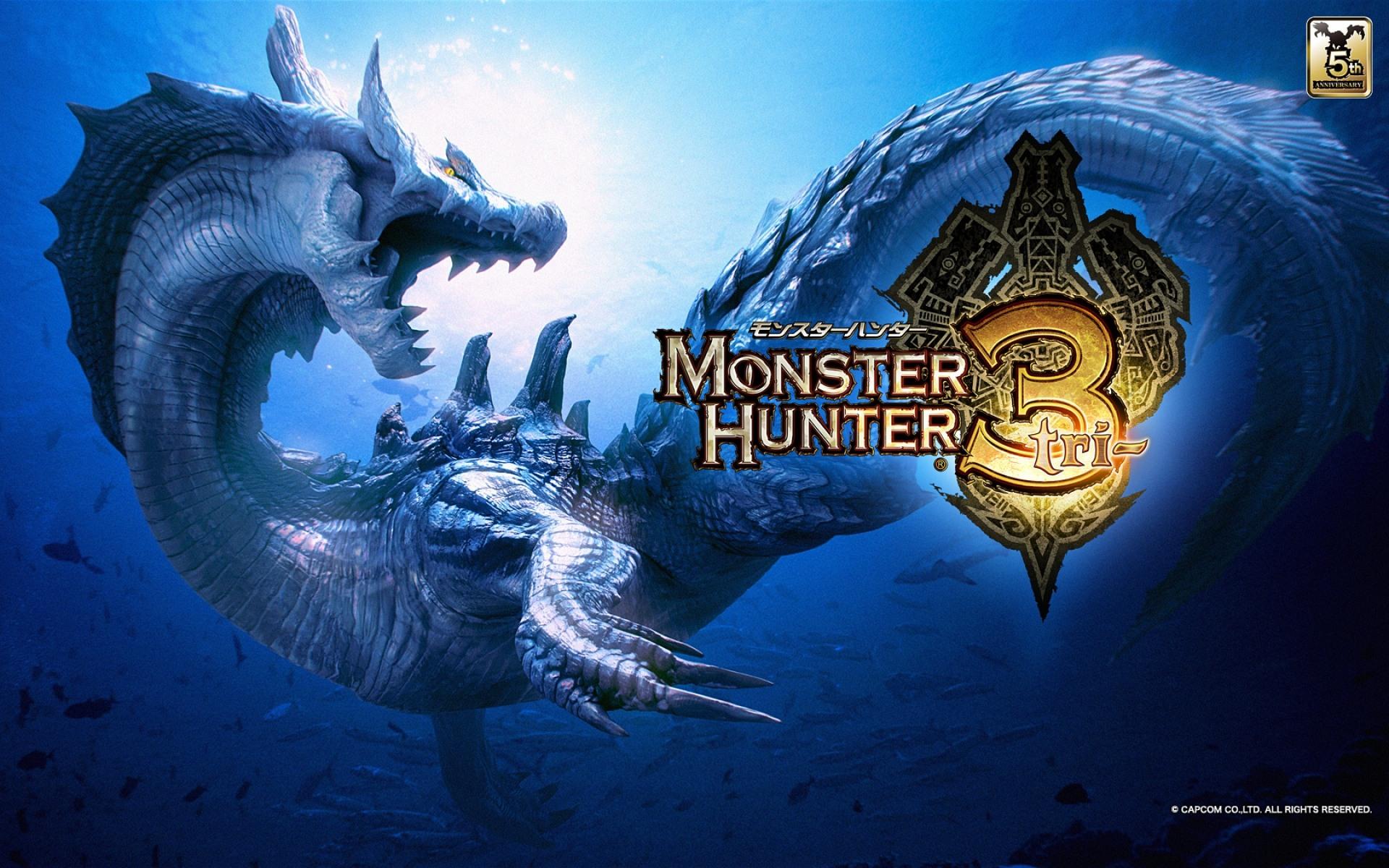 Monster Hunter Tri Online Servers Will Be Shut Down In April