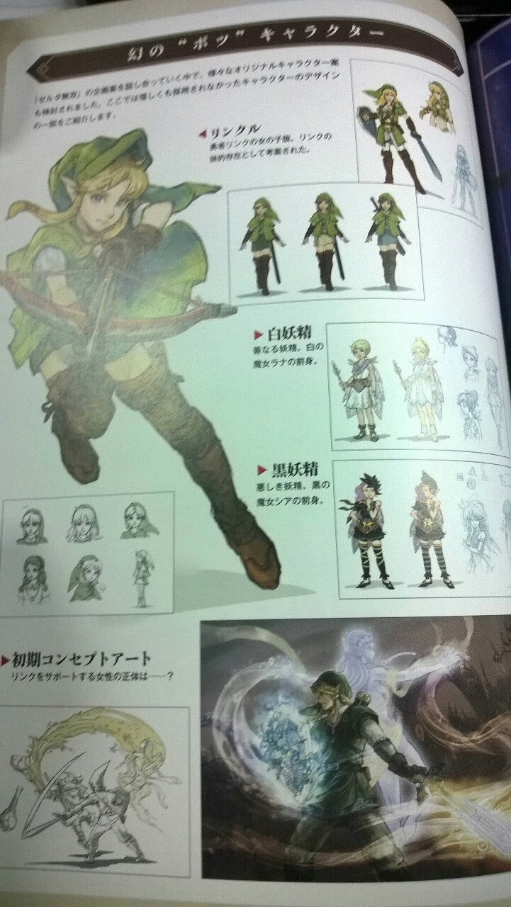 Pictures from the Hyrule Warriors artbook show concept for female Link