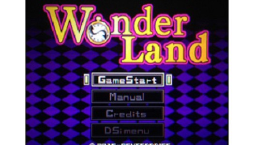 PN Review: G.G Series WonderLand (DSiWare)