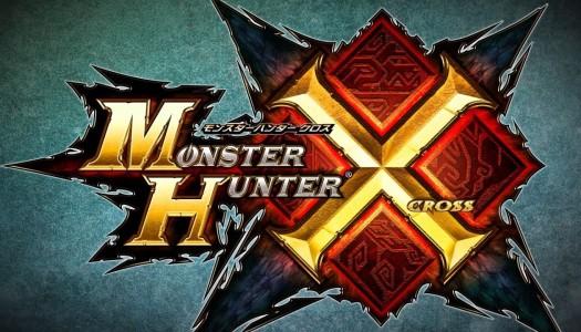 New Monster Hunter X trailer showcases Toon Link