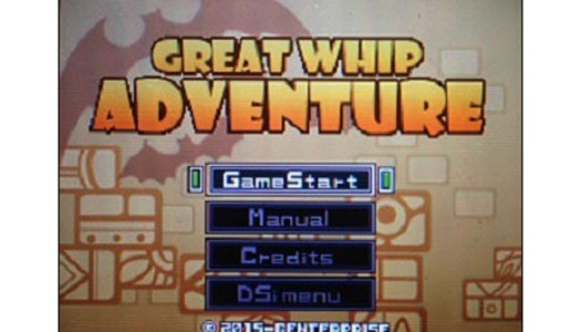 PN Review: G.G Series Great Whip Adventure (DSiWare)