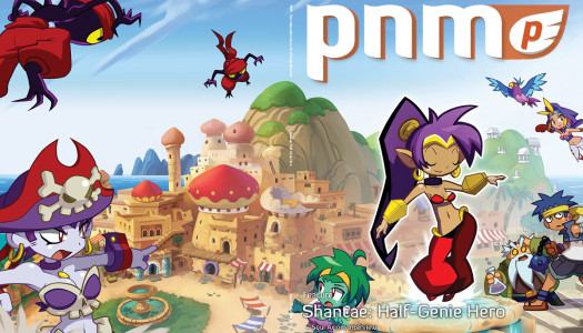 Interview – What Could Have Been: @WayForward's 'Shantae for Smash' Campaign
