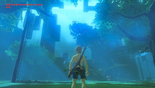 Nintendo Download June 29, 2017 – Breath of the Wild DLC, GoNNER