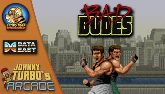 Review: Johnny Turbo's Arcade: Bad Dudes (Nintendo Switch)