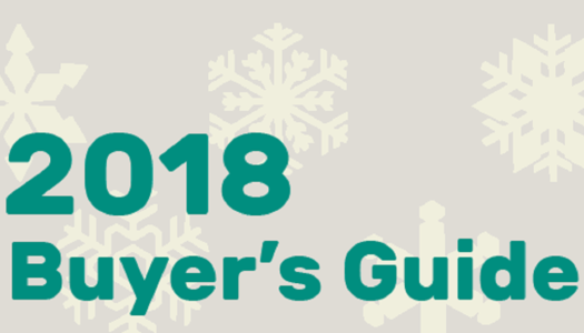 Pure Nintendo Winter Buyer's Guide – Expanded Edition
