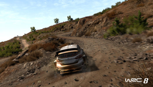 WRC 8 coming to Switch later this year
