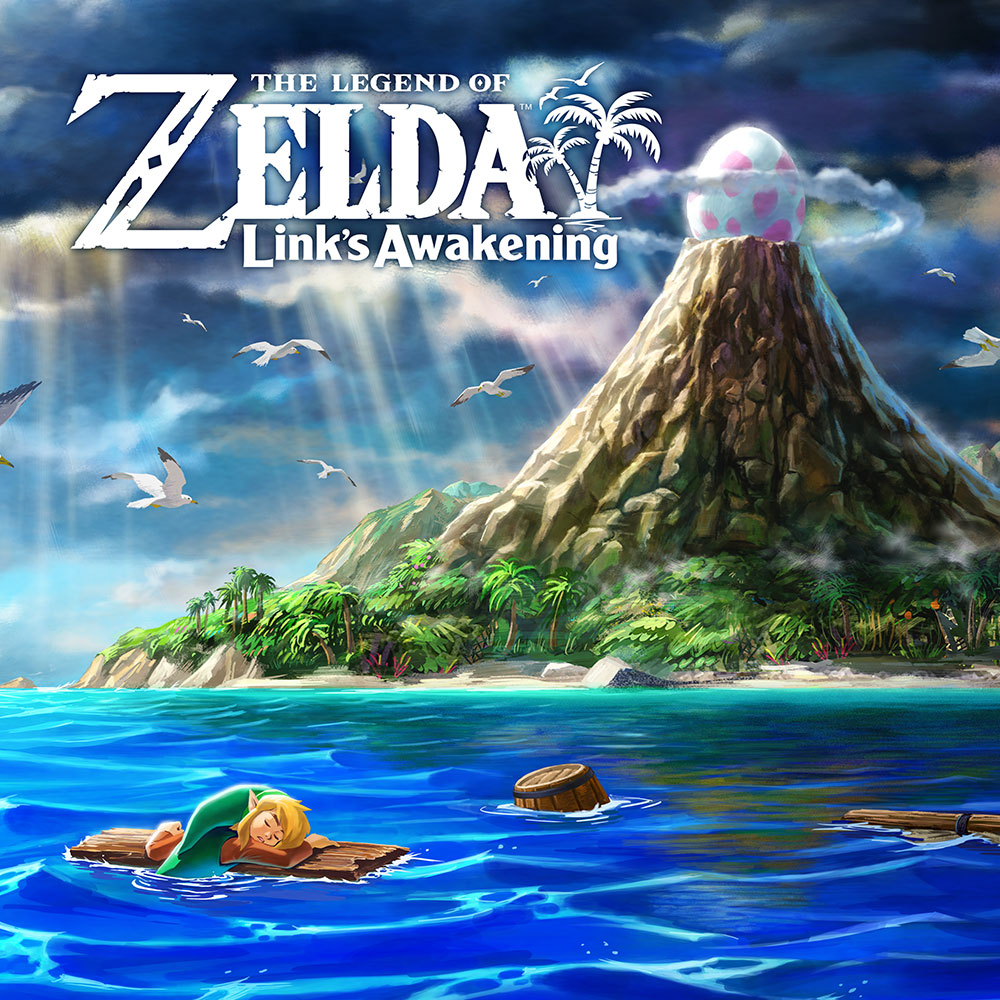 Zelda Link's Awakening Switch