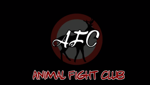 Review: Animal Fight Club (Nintendo Switch)