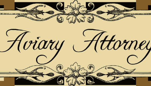 Review: Aviary Attorney: Definitive Edition (Nintendo Switch)