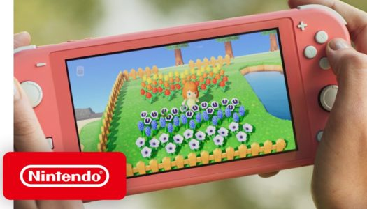 Nintendo Switch System Update 10.0.0 is out now and adds button mapping