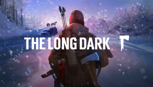 Review: The Long Dark (Nintendo Switch)
